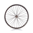 Bicycle wheel