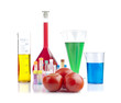 Genetically modified organism - tomatoes and glassware