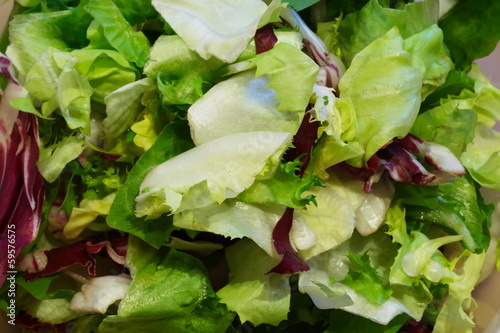 canvas print picture geschnittener gemischter salat