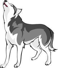 wolf howls