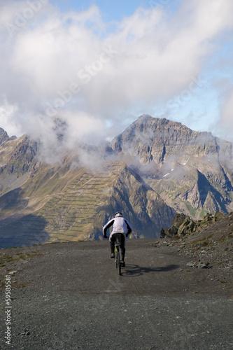Deurstickers Mountainbiker in den Alpen