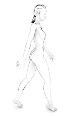 Donna corpo umano anatomia corpo bianco schizzo disegno