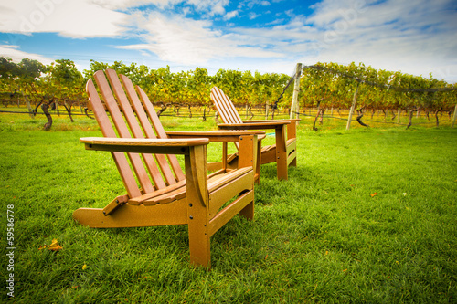 Adirondack style chair on lawn of vineyard