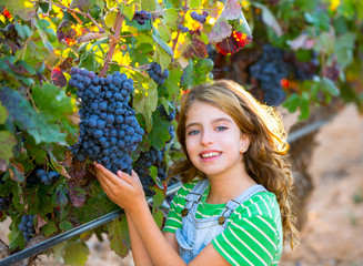 Farmer kid girl in vineyard harvest autumn leaves in mediterrane