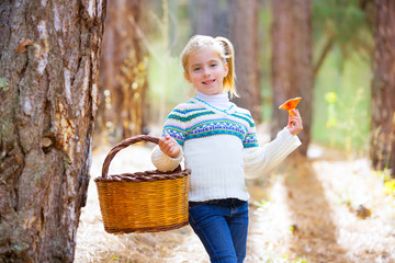 kid girl searching chanterelles mushrooms with basket in autumn
