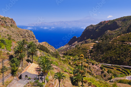 Road in La Gomera island - Canary - 59590711