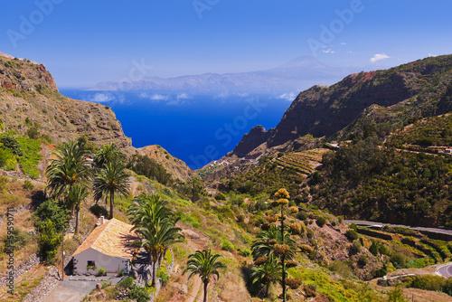 Poster Canyon Road in La Gomera island - Canary