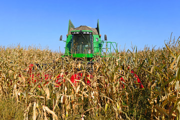 Corn harvesting combine