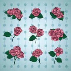 Different Pink Roses Set - Vector Illustration