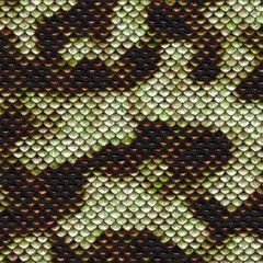 Snake skin pattern and texture