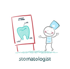 stomatologist says a presentation on the tooth