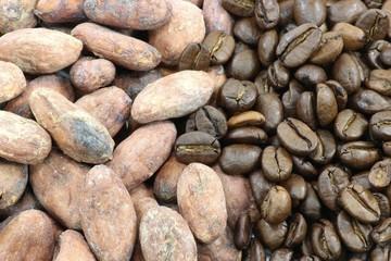 KakaoKaffee01