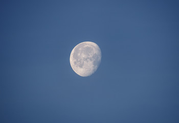 moon on a morning sky