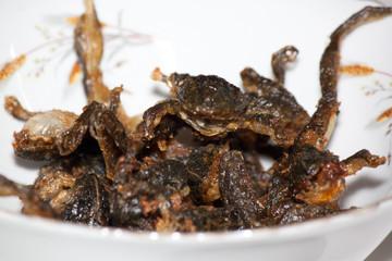 fried frog