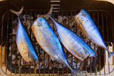 tuna fish barbecue with bonito sarda and little tunny poster
