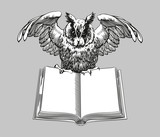 Education emblems. Owl on a book.