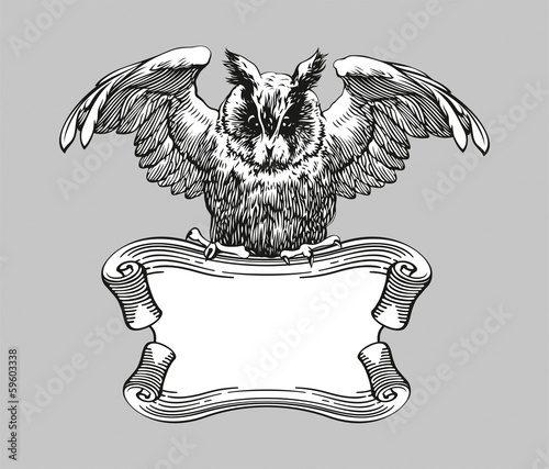 Education emblems. Owl on a banner.