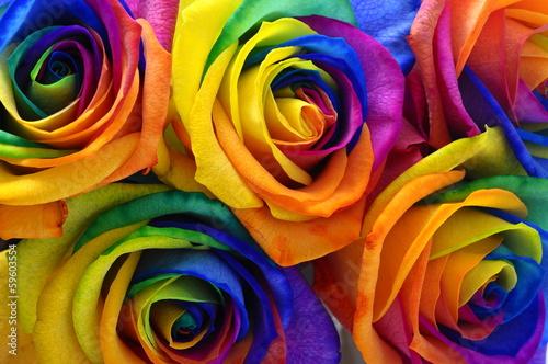 Foto op Plexiglas Roses Rainbow rose or happy flower