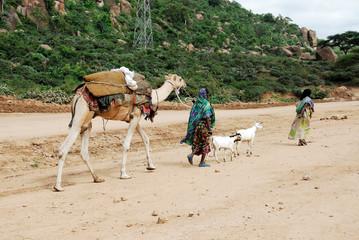 Harari women (Ethiopia)