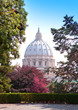 View at the St Peter's Basilica from the Vatican Gardens