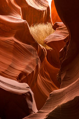 Lower Antelope Canyon Detail