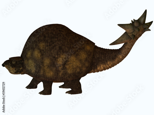 Glyptodont Profile