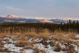 Winter wilderness landscape Yukon Territory Canada