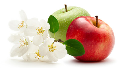 Apples and flower