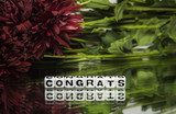 Congrats with red flowers and green leaves