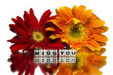 Miss you with flowers