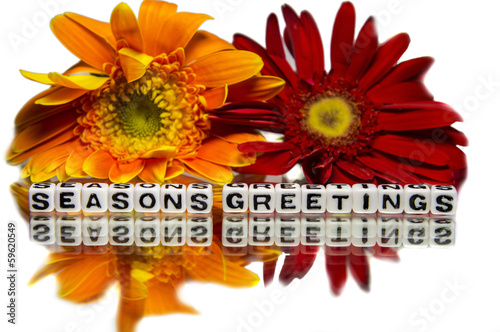 Seasons greetings with yellow and red flowers