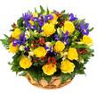 Obrazy na płótnie, fototapety, zdjęcia, fotoobrazy drukowane : Natural yellow roses and blue irises in a basket