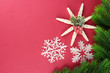 Beautiful snowflakes with fir branch on pink background