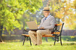 Senior man with hat sitting on a bench and working on laptop