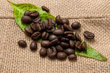 Coffee bean and leaf