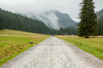 Dolina Kościeliska Tatry Polska