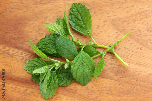 Freshly picked Lemon balm on a wooden background