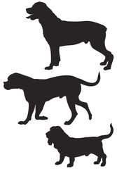 Dog breed silhouettes 4