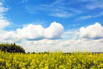 Облака над сельским полем.