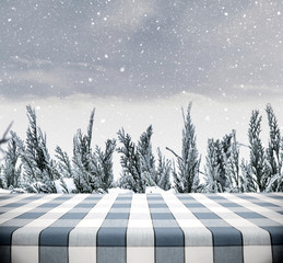 Picnic Table on Winter