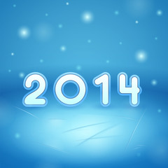 2014 on Ice and snow