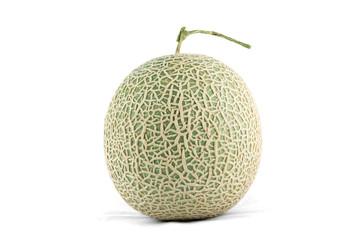 cantaloupe melon isolate