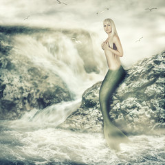 Fantasy world. Beauty mermaid sitting on rock