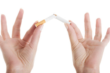 Broken cigarette in woman's hands.