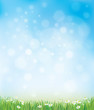 Obrazy na płótnie, fototapety, zdjęcia, fotoobrazy drukowane : Vector sky background with grass and chamomiles.