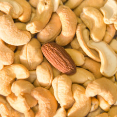 Diversity (metaphoric) - Almond among salted cashew nuts