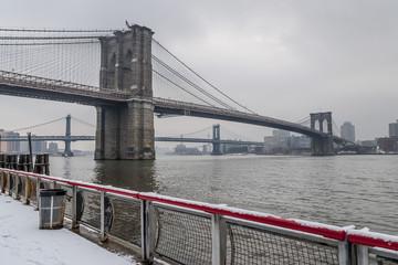 Brooklyn Bride and Snow
