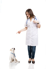 Beautiful young veterinary pointing to a a cute puppy labrador d