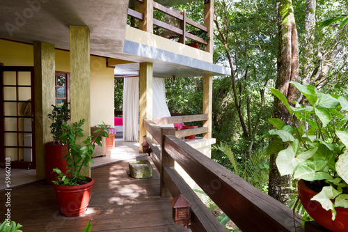 Jungle living in Belize