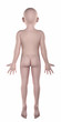 Boy anatomical pose isolated posterior view